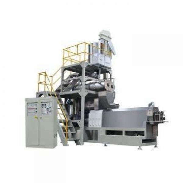 Saibainuo Automatic Double Screw Extruder Pet Food Processing Equipment