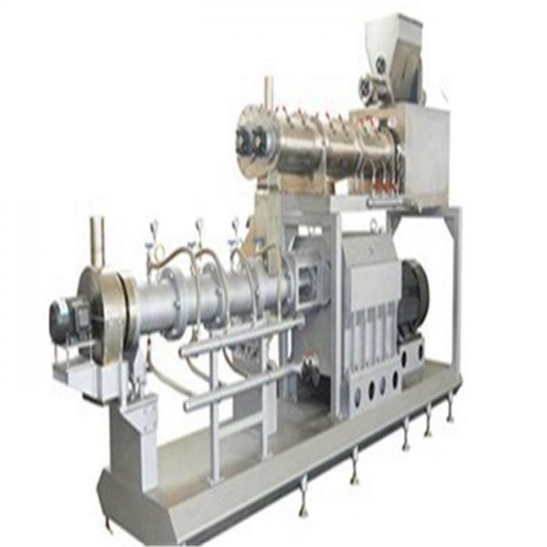 Twin Screw Extruder Ce Standard Automatic Rice Making Machine