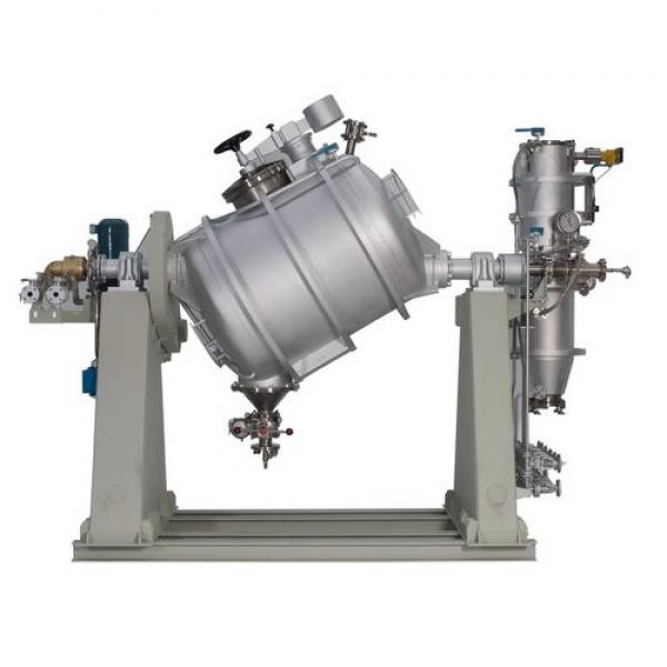 Double Cone Continuous Rotary Vacuum Food Powder Dryer