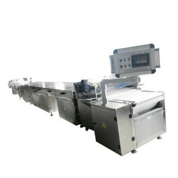 Puffed Snacks Food Making Machine Crispy Rice Puffs Make Machine Cereal Bar Equipment Processing Line