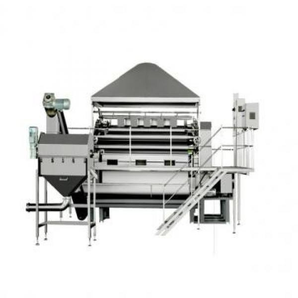 Toasted Extrusion Breakfast Cereals Making Corn Flakes Machine