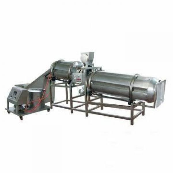 Breakfast Cereal Making Machine Process Equipment