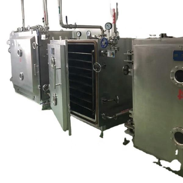 Vacuum Microwave Herbal Drying Machinery