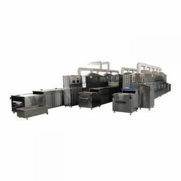 Large Commerical Microwave Vacuum Tray Drying Business Machines for Food Processing Industries
